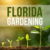 Florida Gardening 6-24-18 Hour 2