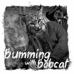 Bumming with Bobcat