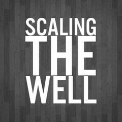 Scaling The Well