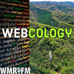 Webcology