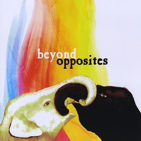 Beyond Opposites