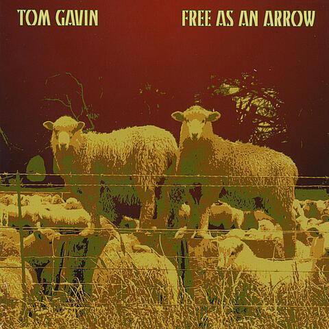 Free as an Arrow