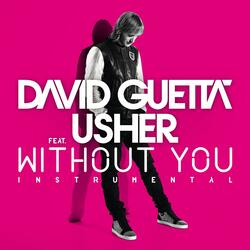 Without You (feat. Usher)