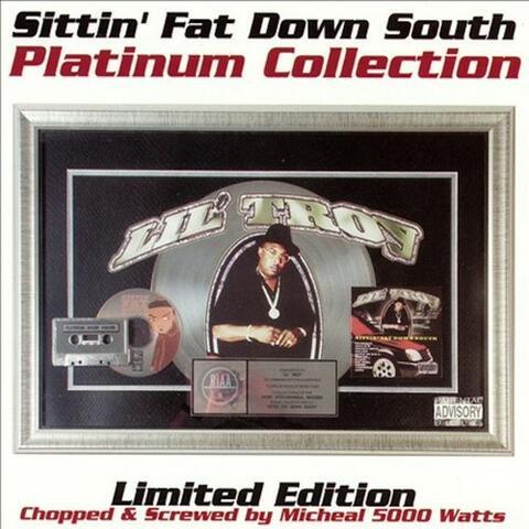 Sittin Fat Down South (Michael Watts Remix)
