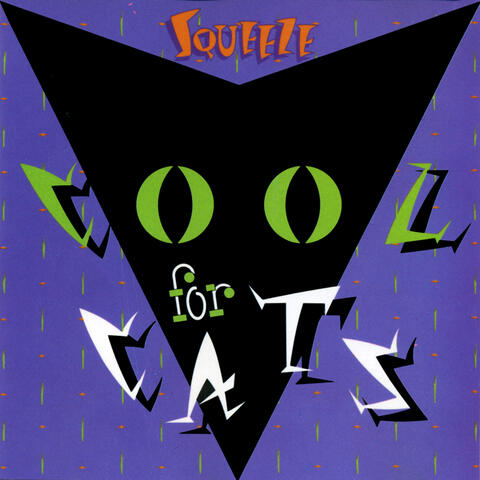 Cool For Cats