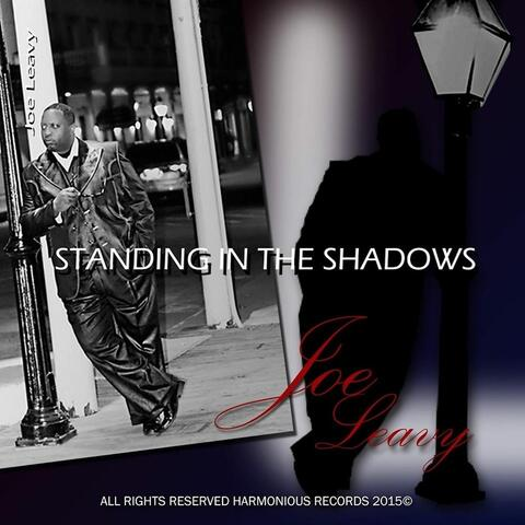 Standing in the Shadows  (feat. Vincent Lars)