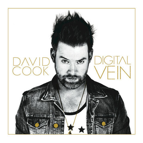 Digital Vein