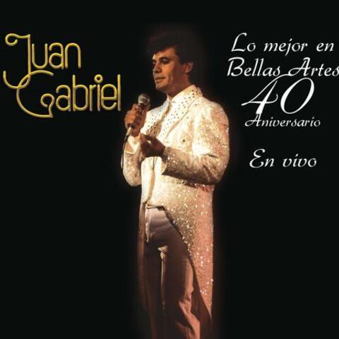 Lo Mejor en Bellas Artes - 40 Aniversario