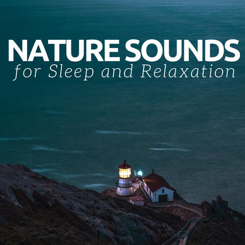 Nature Sounds for Sleep and Relaxation - Calm Music Piano