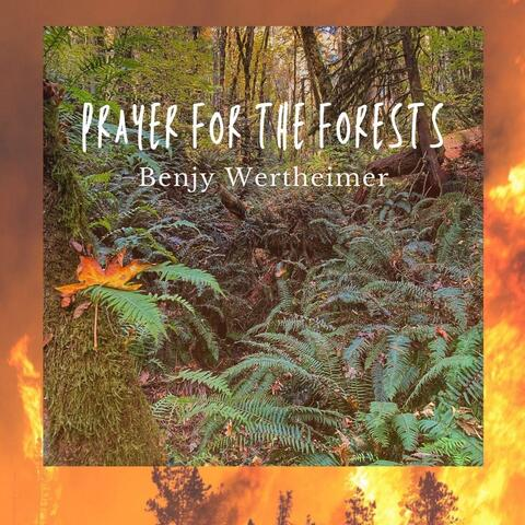 Prayer for the Forests
