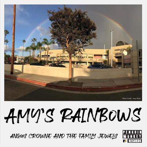 Amy's Rainbows