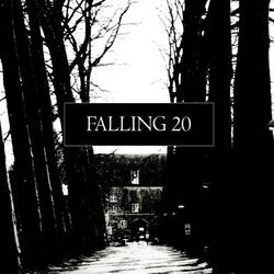 Falling 20