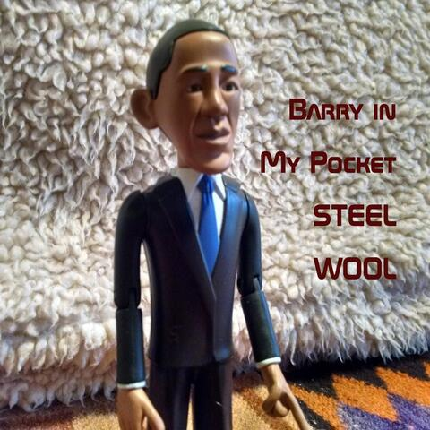 Barry in My Pocket