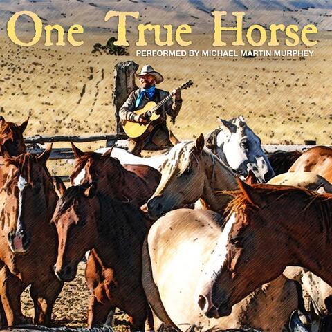 One True Horse