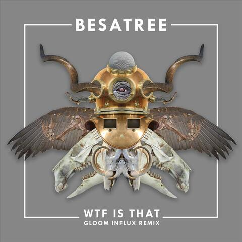 WTF Is That (Remix)