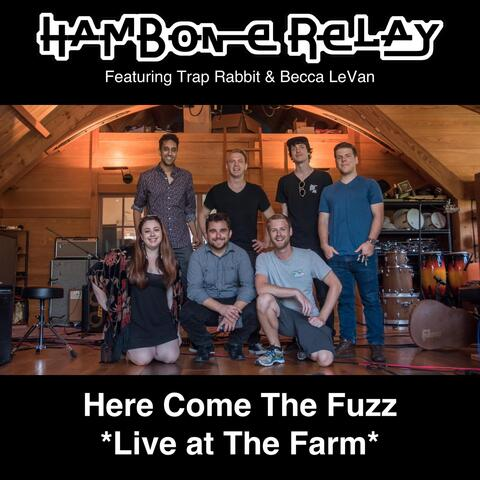 Here Come the Fuzz (Live) [feat. Trap Rabbit & Becca Levan]