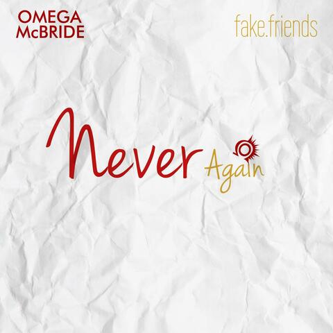 Never Again (feat. Fake.friends)