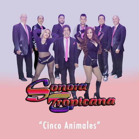 Cinco Animales