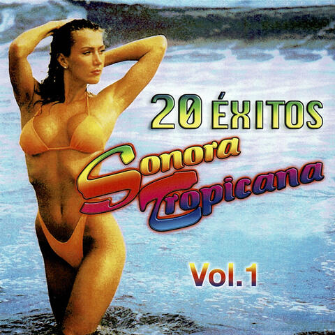 20 Éxitos, Vol. 1
