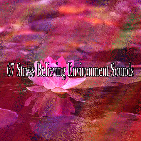 67 Stress Relieving Environment Sounds