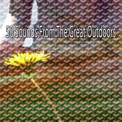 50 Sounds from the Great Outdoors