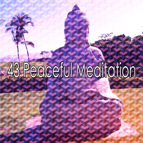 43 Peaceful Meditation