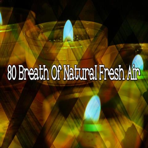 80 Breath Of Natural Fresh Air