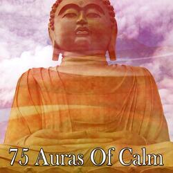 Harmonys Peaceful Serenity