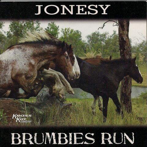 Brumbies Run