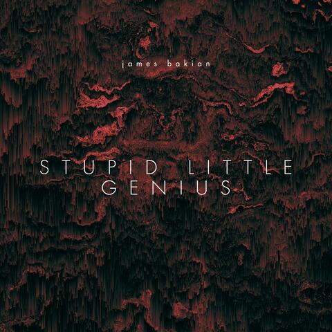 Stupid Little Genius