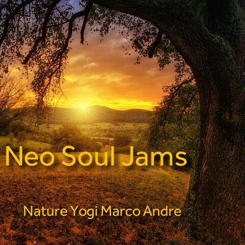 Neo Soul Jams