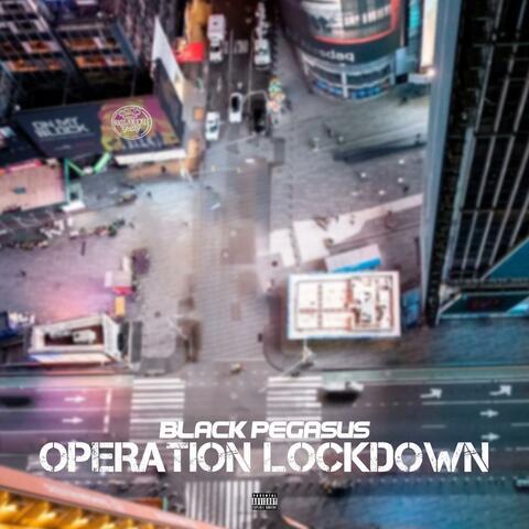 Operation Lockdown