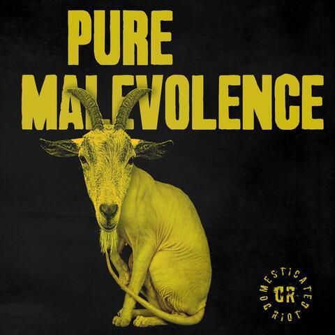 Pure Malevolence