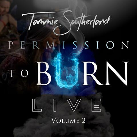 Permission to Burn, Vol. 2