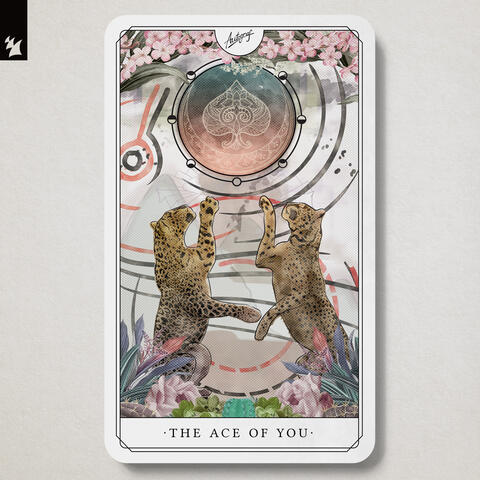 The Ace Of You