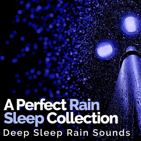 A Perfect Rain Sleep Collection