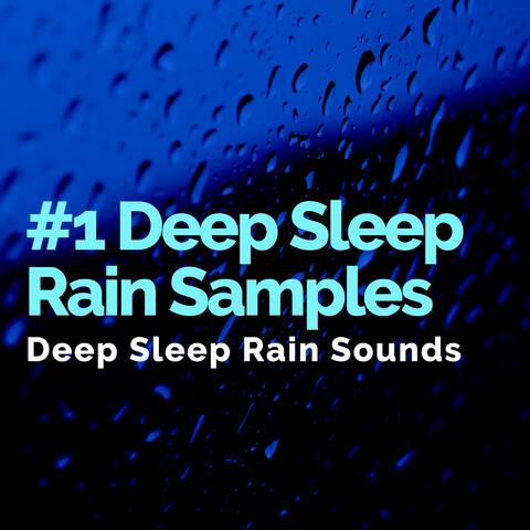 #1 Deep Sleep Rain Samples