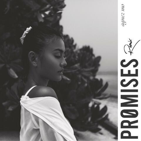 PROMISES (remix)