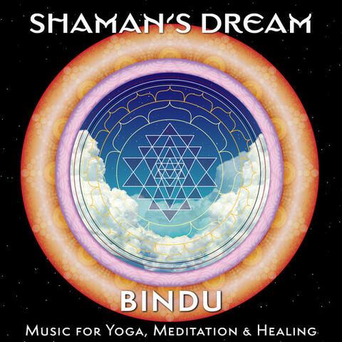 Bindu: Music for Yoga, Meditation & Healing