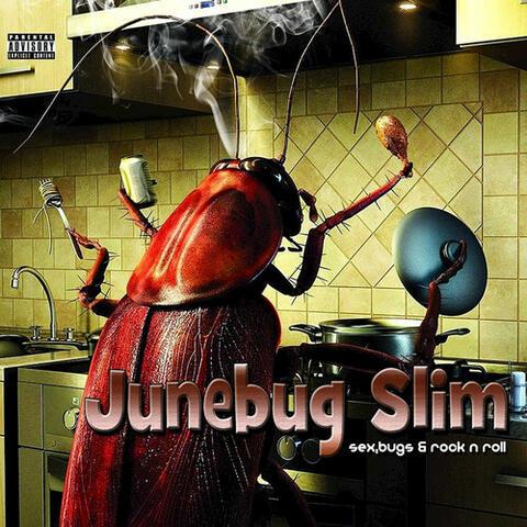 Sex, Bugs & Rock n Roll
