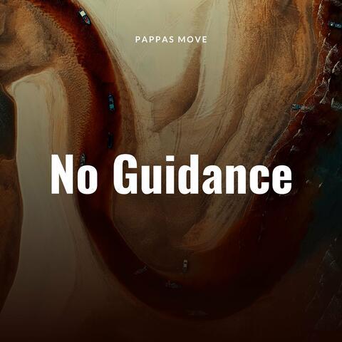 No Guidance