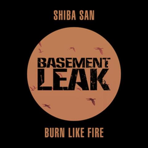 Burn Like Fire