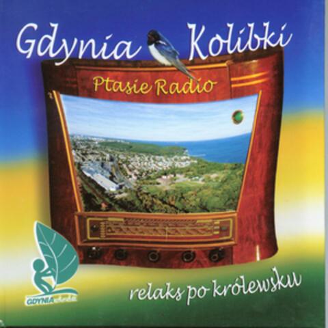 Birds radio: Ambient sounds of birds from Gdynia Kolibki