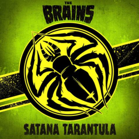 Satana Tarantula
