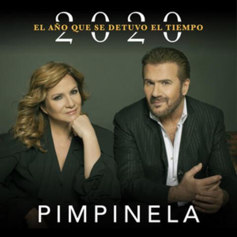 2020: El Año Que Se Detuvo el Tiempo