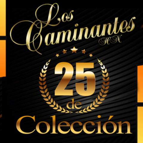 25 de Colección