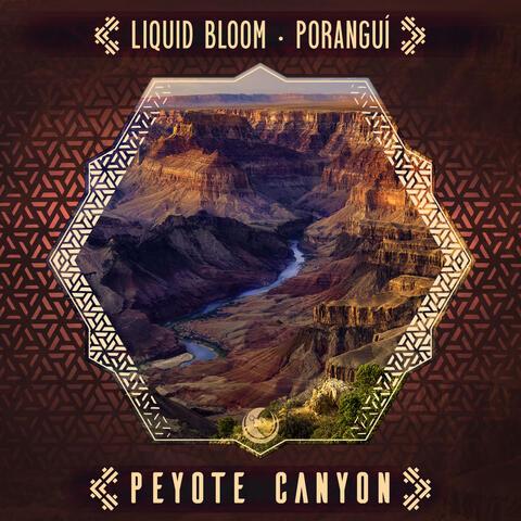 Peyote Canyon