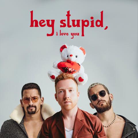 Hey Stupid, I Love You (feat. Mau y Ricky)