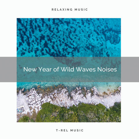 2020 Best: New Year of Wild Waves Noises