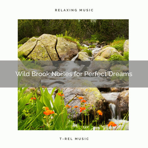 1 Wild Brook Noises for Perfect Dreams